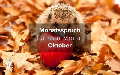 Monatsspruch für den Monat Oktober 2020