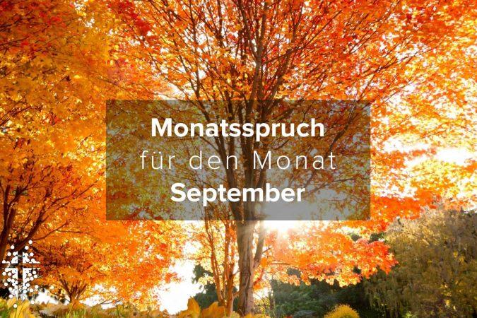 Monatsspruch für den Monat September 2020